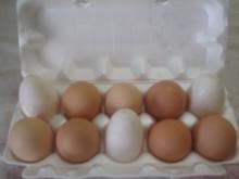 """Яйцо куриное домашнее """"БРОНЬ"""""""