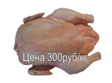 Курёнок (тушка), ср.вес 1,5кг